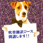 info_dog_fukikae