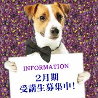 info_dog_boshu_201802